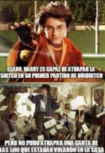 meme hp6.png
