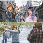 ron y hermione y lizbeth rodriguez jaja.png